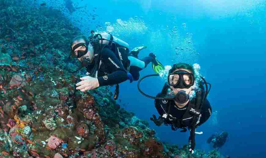PADI Course | Manta Rhei Dive Center Komodo