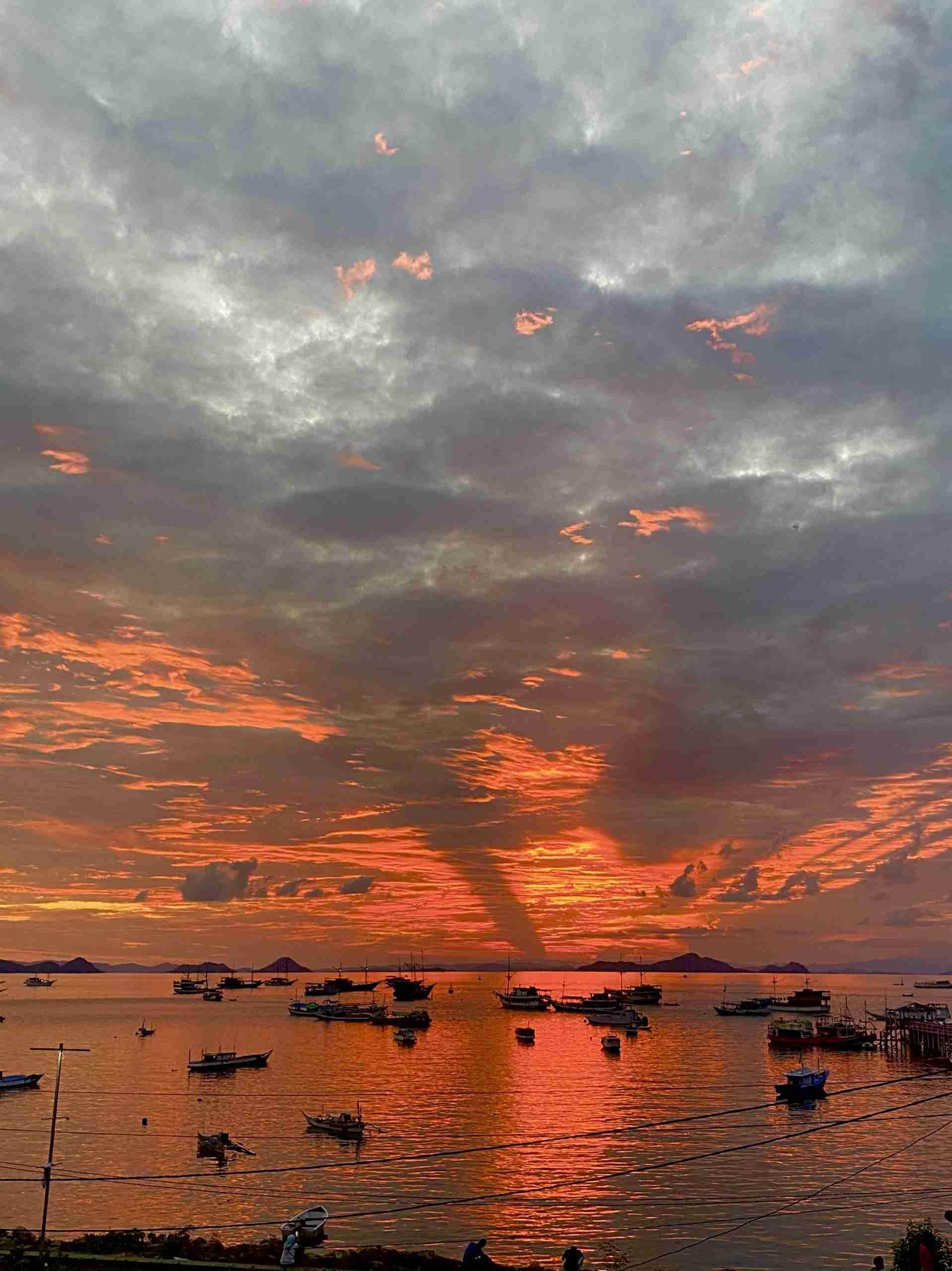 sunset blue marlin
