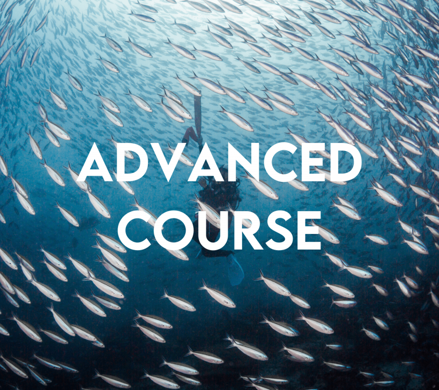 Advanced course